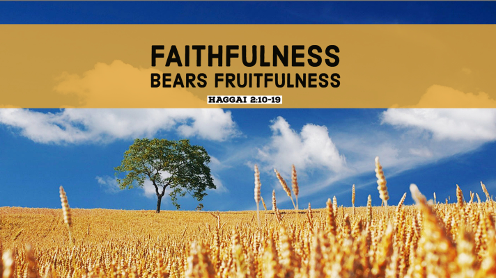 Faithfulness Bears Fruitfulness | Haggai 2:10-23