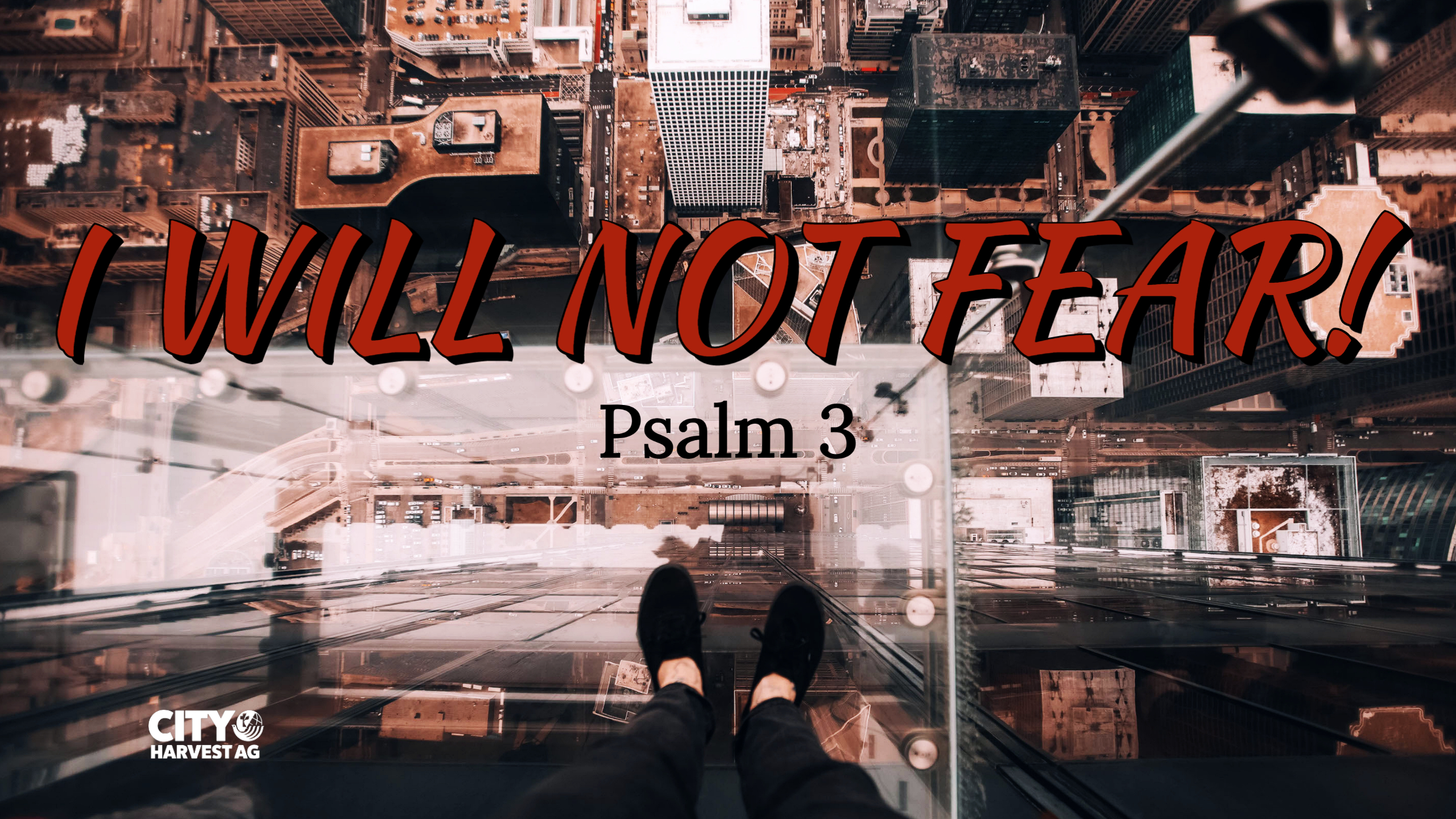 Read more about the article Psalm 3 | I Will Not Fear